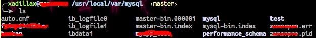 Binlog 文件